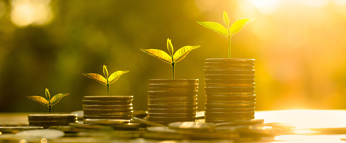 financial accounting and personal wealth growth
